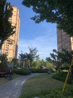 (芝英镇)文昌花苑1室1厅1卫1200元/月40m²出租